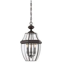 Quoizel Lighting Newbury 3 Light Outdoor Hanging Lantern in Medici Bronze NY1179Z