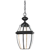 Newbury Clear LED 11 inch Mystic Black Outdoor Hanging Lantern
