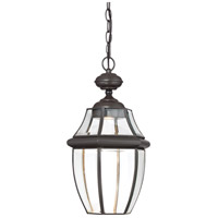Newbury Clear LED 11 inch Medici Bronze Outdoor Hanging Lantern