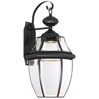 Newbury Clear LED 20 inch Mystic Black Outdoor Wall Lantern