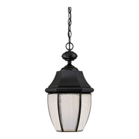 Newbury LED 10 inch Mystic Black Hanging Lantern Ceiling Light in LED AC 120V