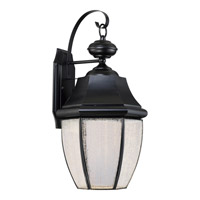 Newbury 10 inch Mystic Black Wall Lantern Wall Light in LED AC 120V