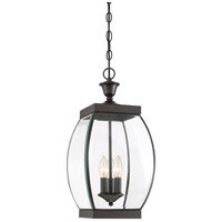 Oasis 3 Light 9 inch Medici Bronze Outdoor Hanging Lantern