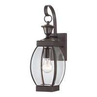 Oasis 1 Light 17 inch Medici Bronze Outdoor Wall Lantern in Fluorescent