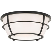 Signature 2 Light 13 inch Earth Black Flush Mount Ceiling Light