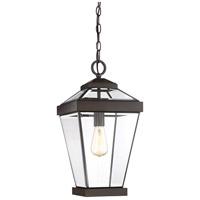 Quoizel RAV1910WT Ravine 1 Light 10 inch Western Bronze Outdoor Hanging Lantern