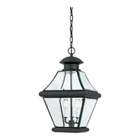 Quoizel RJ1911K Rutledge 3 Light 11 inch Mystic Black Outdoor Hanging Lantern alternative photo thumbnail
