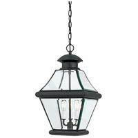 Quoizel Lighting Rutledge 3 Light Outdoor Hanging Lantern in Mystic Black RJ1911K