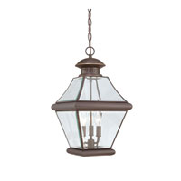 Quoizel Lighting Rutledge 3 Light Outdoor Hanging Lantern in Medici Bronze RJ1911Z