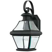 Quoizel Lighting Rutledge 1 Light Outdoor Wall Lantern in Mystic Black RJ8407K