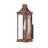 Quoizel Lighting Salem 1 Light Outdoor Wall Lantern in Aged Copper SLM8406AC