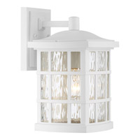 Quoizel Stonington 1 Light Wall Lantern in Fresco SNN8408WFL