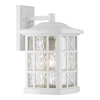 Quoizel Stonington 1 Light Wall Lantern in Fresco SNN8409WFL