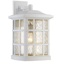 Quoizel Stonington 1 Light Outdoor Wall Lantern in Fresco SNN8411WFL