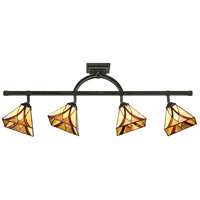 Quoizel TFAS1404VA Asheville 4 Light 120V Valiant Bronze Track Light Ceiling Light, Naturals