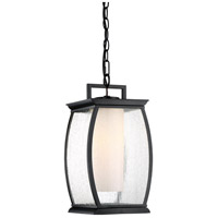 Terrace 1 Light 9 inch Mystic Black Outdoor Hanging Lantern