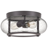Quoizel TRG1612OZ Trilogy 2 Light 12 inch Old Bronze Flush Mount Ceiling Light