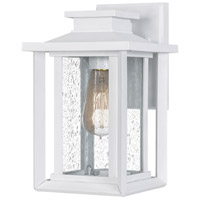 Quoizel WKF8407W Wakefield 1 Light 11 inch White Lustre Outdoor Wall Lantern