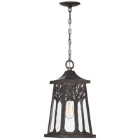 Quoizel WWD1909IB Wildwood 1 Light 9 inch Imperial Bronze Outdoor Hanging Lantern, Large