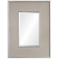 Dexter 48 X 36 inch Antique Silver Mirror Home Decor