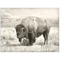 North Range 48 X 36 inch Art Print