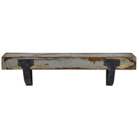 Caria 24 inch Painting and Powder Coated Wall Shelf