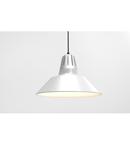 Troy RLM Lighting 5DHM20MWTPNA-BC Heavy Metal 1 Light 20 inch Painted Natural Aluminum Pendant Ceiling Light photo thumbnail