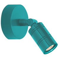 Bullet Head 8 inch 14 watt Tahitian Teal Wall Monopoint Wall Light, LS Series LED