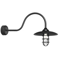 Troy RLM Lighting RID13MBK2LL30 Retro Industrial 1 Light 13 inch Black Wall Sconce Wall Light in 30in Arm Clear Glass RLM Classics