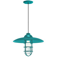 Troy RLM Lighting 5DRID13MTTL-BC Retro Industrial 1 Light 13 inch Tahitian Teal Pendant Ceiling Light Clear Glass RLM Classics
