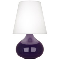 Robert Abbey AM93 June 24 inch 150 watt Amethyst Accent Lamp Portable Light photo thumbnail