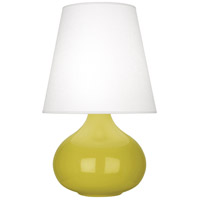Robert Abbey CI93 June 24 inch 150 watt Citron Accent Lamp Portable Light