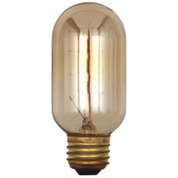 Robert Abbey Signature Light Bulb HIS02