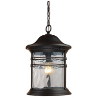 Spark & Spruce 24311-MB View 1 Light 11 inch Matte Black Outdoor Hanging Light