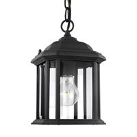 Spark & Spruce 23611-B Cleo 1 Light 7 inch Black Outdoor Pendant