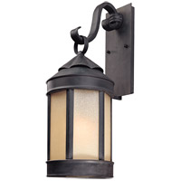 Spark & Spruce 20209-AI Alexandra 1 Light 24 inch Aged Iron Outdoor Wall Lantern in Incandescent