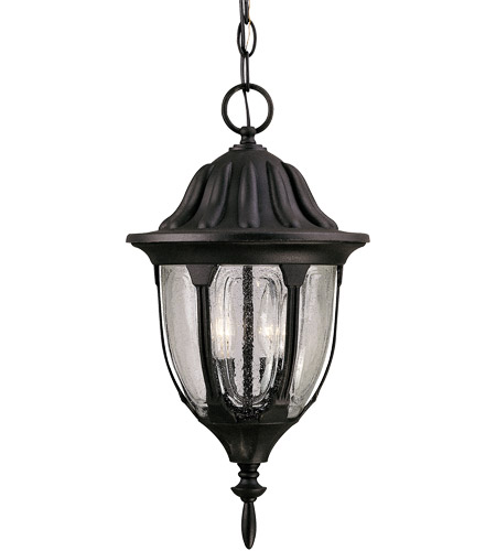Savoy House Tudor 2 Light Outdoor Hanging Lantern in Textured Black 5-1502-BK photo