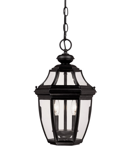 Savoy House Endorado 2 Light Outdoor Hanging Lantern in Black 5-494-BK