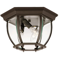 Exterior 3 Light 9 inch Bronze Flush Mount Ceiling Light