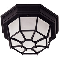 Exterior 1 Light 9 inch Black Flush Mount Ceiling Light in Frosted