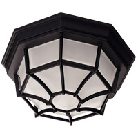 Exterior 1 Light 11 inch Black Flush Mount Ceiling Light in Frosted