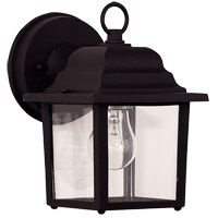 Exterior 1 Light 8 inch Black Outdoor Wall Lantern in Clear