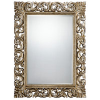 Laurie 52 X 40 inch Silver Mirror Home Decor