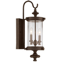 Palmer 2 Light 24 inch Walnut Patina Outdoor Wall Lantern in Clear Seeded