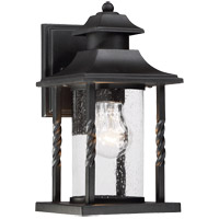 Savoy House Dorado 1 Light Outdoor Wall Lantern in Textured Black 5-1230-BK