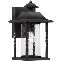 Savoy House Dorado 1 Light Outdoor Wall Lantern in Textured Black 5-1231-BK