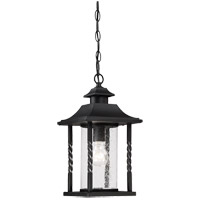 Dorado 1 Light 8 inch Black Hanging Lantern Ceiling Light in Clear Seeded