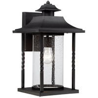 Savoy House Dorado 1 Light Outdoor Wall Lantern in Textured Black 5-1234-BK