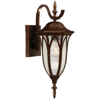 Dayton 1 Light 18 inch New Tortoise Shell Outdoor Wall Lantern in Seeded