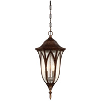 Dayton 2 Light 9 inch New Tortoise Shell Outdoor Hanging Lantern